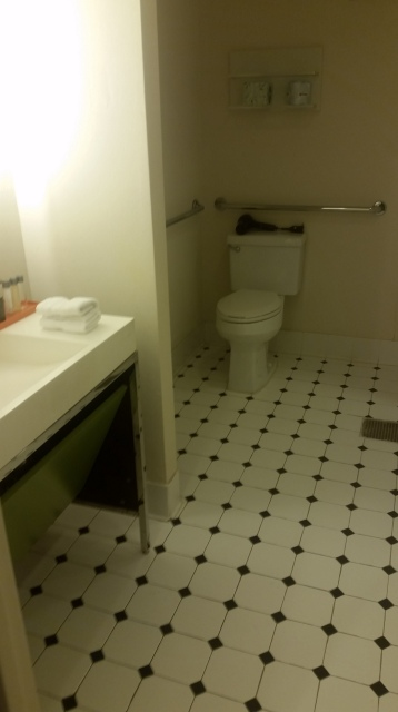 The roll-in bathroom in our Stewart Hotel suite